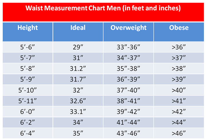 body fat percentage bmi method