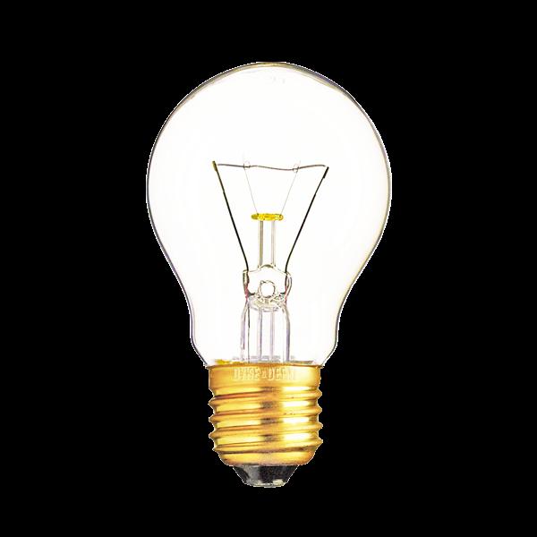 Bioneer: Light Bulb Glowing Png