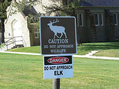 fotr Yellowstone 1.jpg