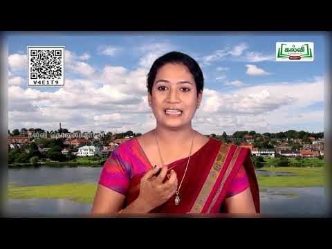 8th Science நீர் Water அலகு13 பகுதி4 Kalvi TV