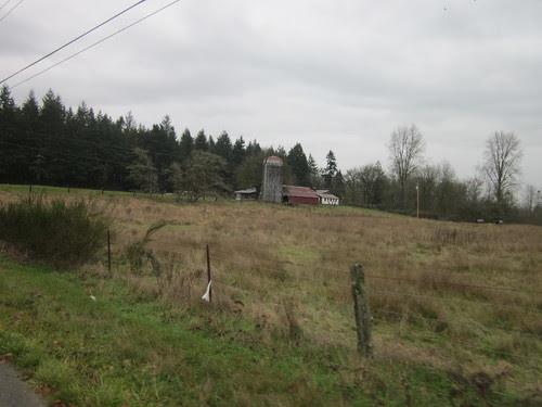 Farm near Rochester WA