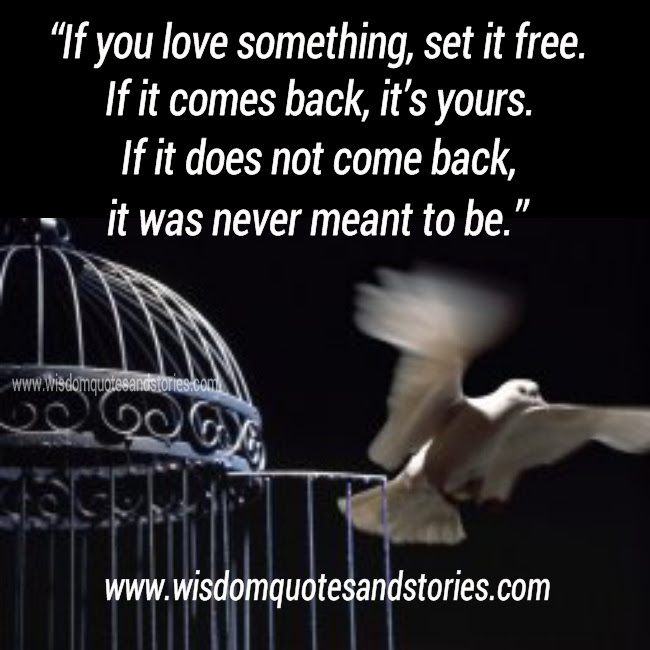 If You Love Something Set It Free Wisdom Quotes Stories