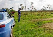 Camorra,fanghi altamente tossici spacciati per concime e fertilizzante per terreni agricoli