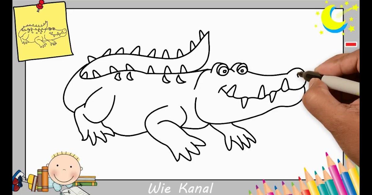krokodil zeichnen für kinder