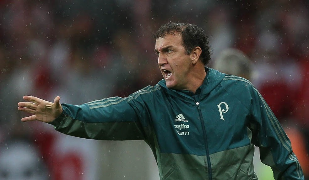 Treinador não gostou da atuação do time no primeiro tempo (Foto: Cesar Greco/Ag Palmeiras/Divulgação)
