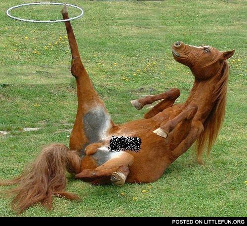 I forgot how to horse