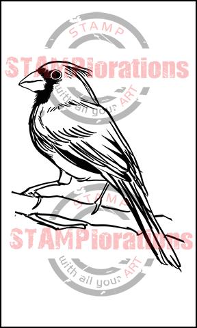 CardinalLARGE