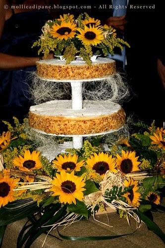 torta di girasoli