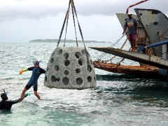 Reef Ball Being Deployed