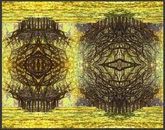 orchard-portals