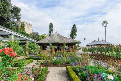 Royal Botanic Gardens Sydney Wedding Ceremony