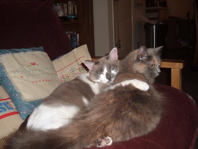 Whistler and Shadow share a hug
