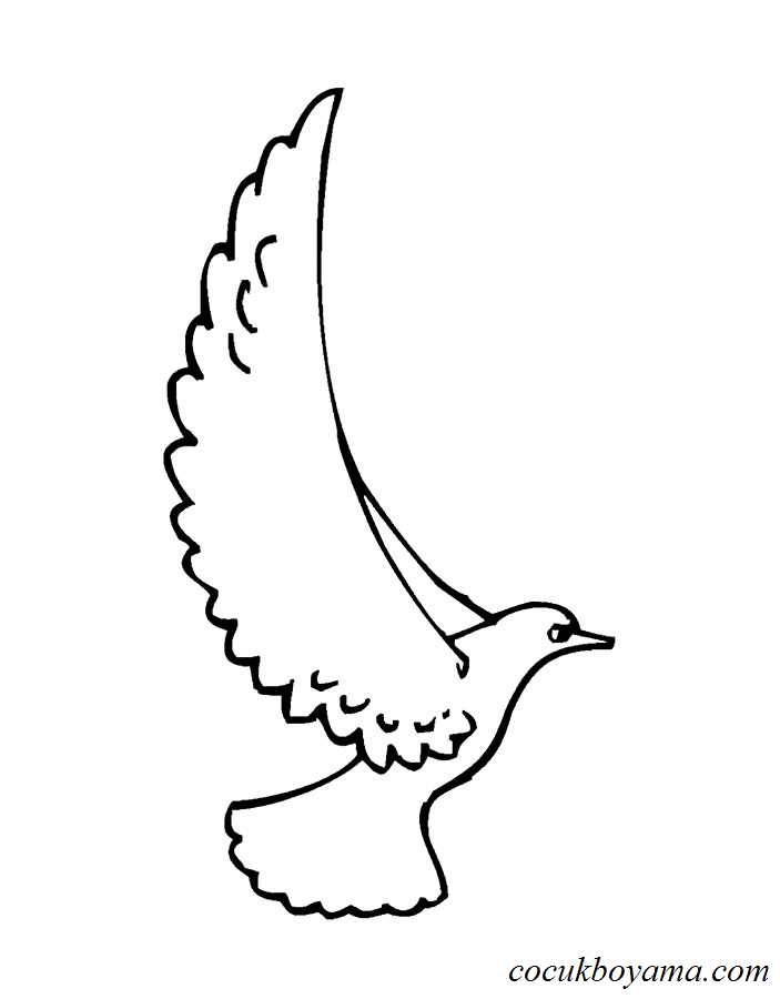Güvercin 36 ücretsiz Boyama Resimleri