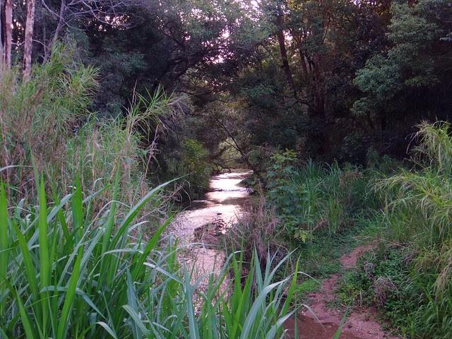 One Mile Creek