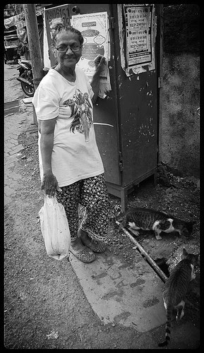 The Cat Feeding Lady of Bandra Bazar Road by firoze shakir photographerno1