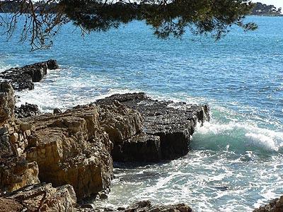 la mer vient nous lécher les pieds.jpg