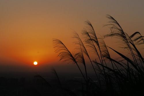 Sunset, Taoyuan-31
