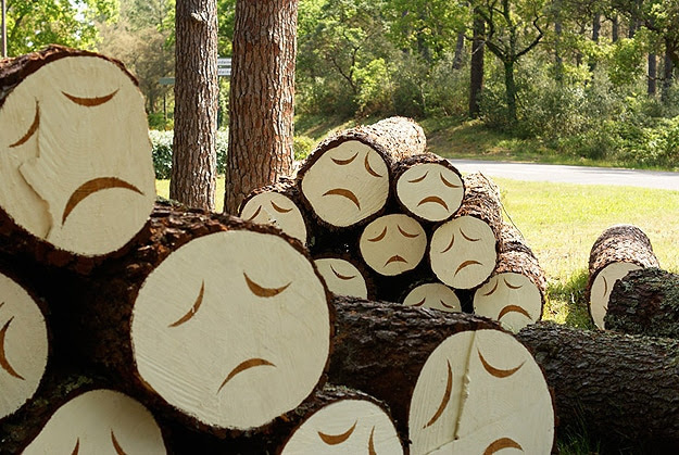 http://www.bitrebels.com/wp-content/uploads/2011/09/Poor-Little-Tree-Faces-2.jpg