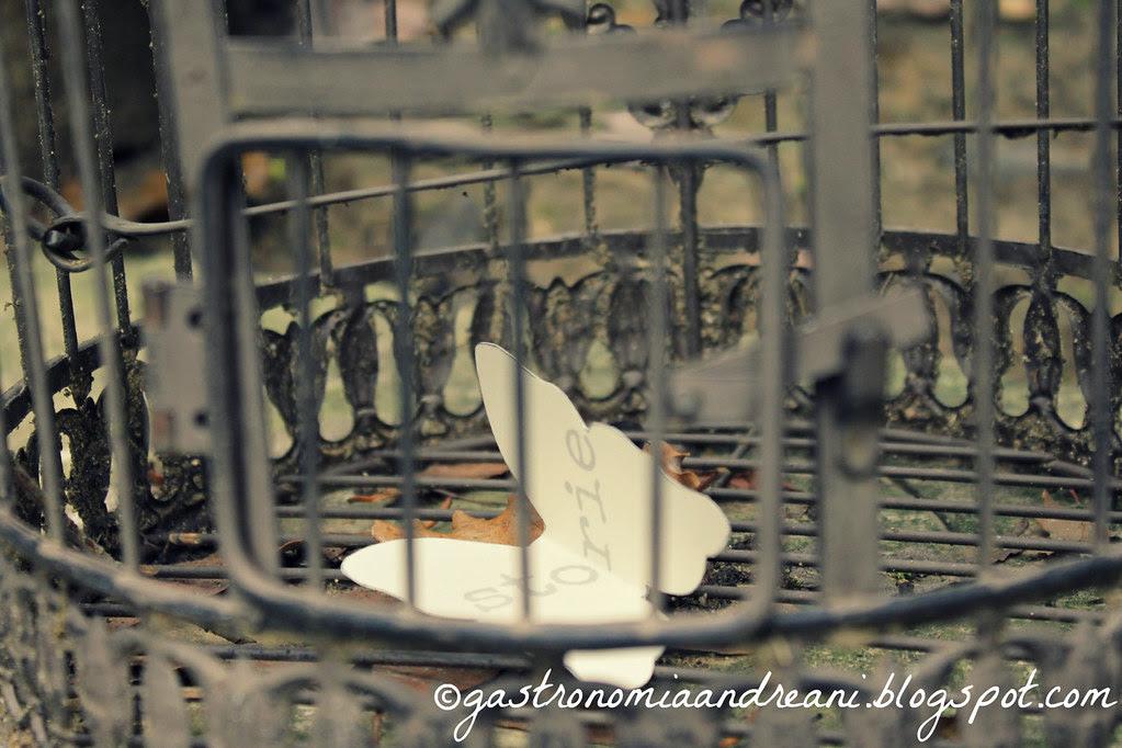 #farfalleinunlazzaretto Parola liberata: storie