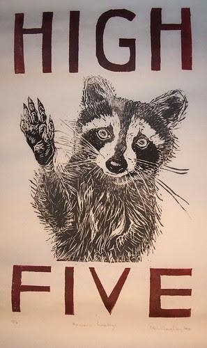 raccoon greeting