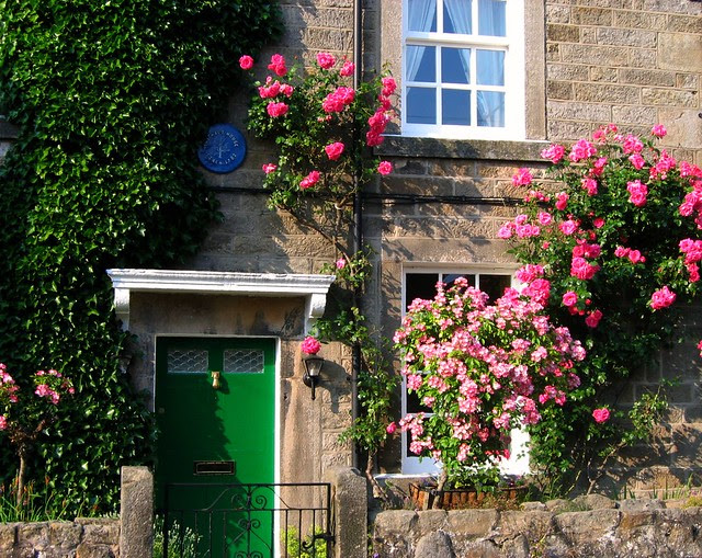 Green Door and Pink Roses in the Village of Baslow, Derbyshire