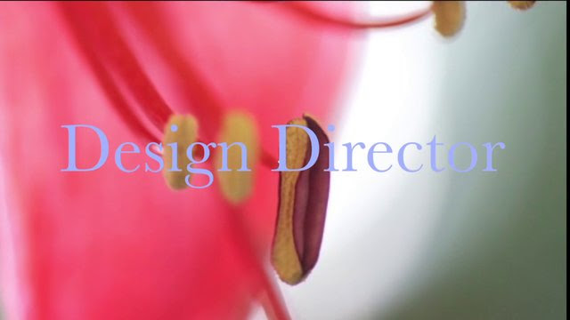 Shop Designer Houston Home Accents & Search Cool Furniture Trade