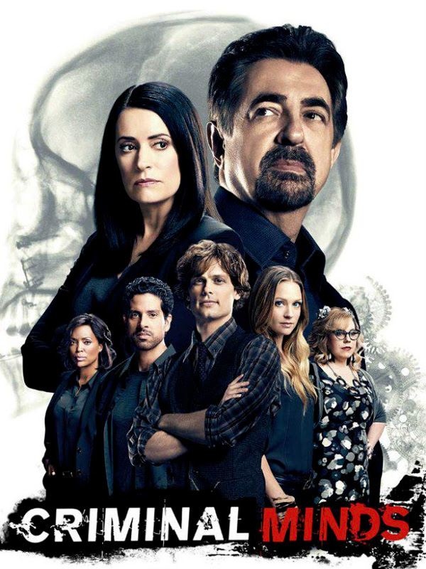 Image result for esprit criminel saison 12