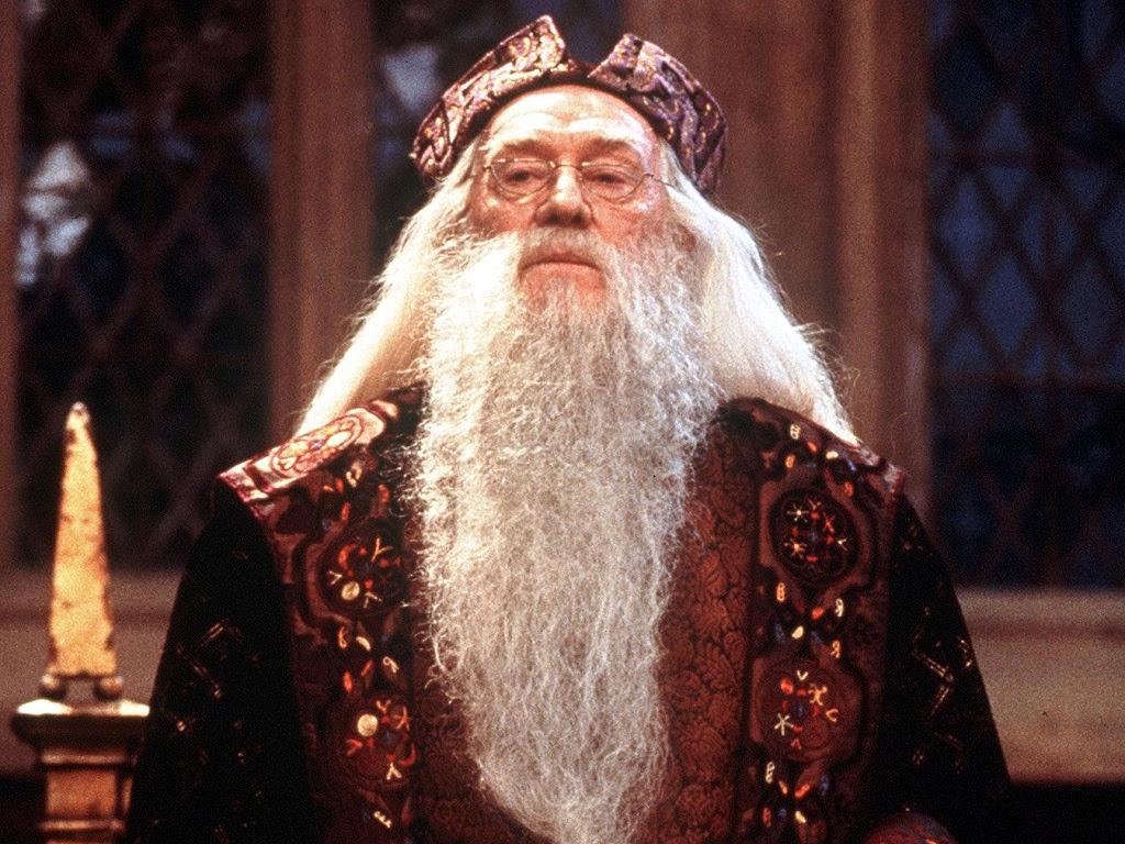 Resultado de imagen para albus dumbledore
