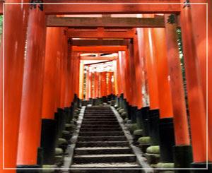 山頂を目指します。ながーい階段、ずーっと続く赤い鳥居。