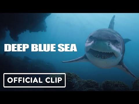 Deep Blue Sea Trilogy: Shark Attack Supercut - Thomas Jane, Michael Rappaport