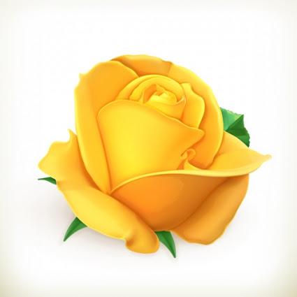 Yellow Rose Vector Free Vectors Ui Download