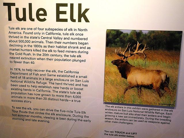 DSCN0532  Visitor Center, San Luis National Wildlife Refuge