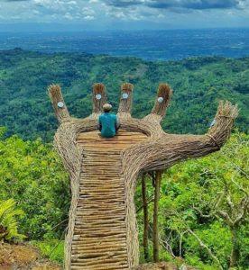 lokasi hutan pinus pengger