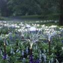 Impresionantes Bruce Munro Instalaciones LED iluminan los jardines de Longwood (9) Cortesía de Bruce Munro
