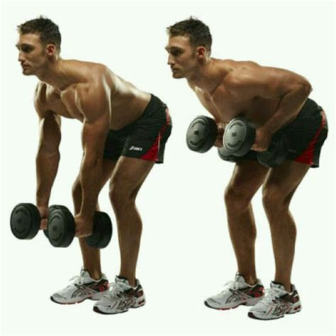 jacks dumbbell bent  rows exercise   workout