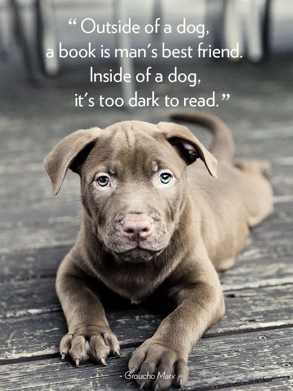 Best Dog Quotes. QuotesGram