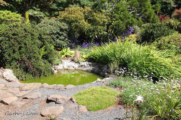 Larnach-Castle-Dunedin-NZ_40