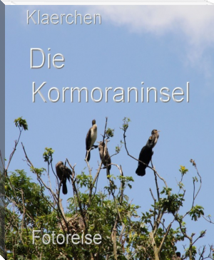 Die Kormoraninsel