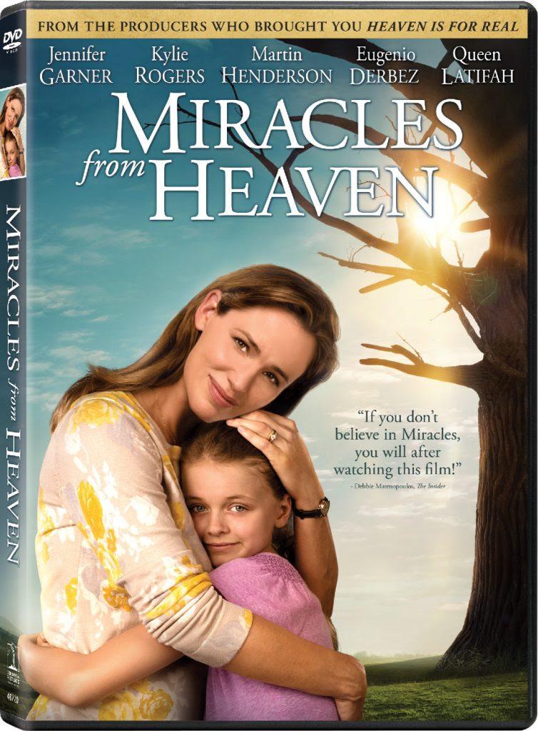 MFH-DVD