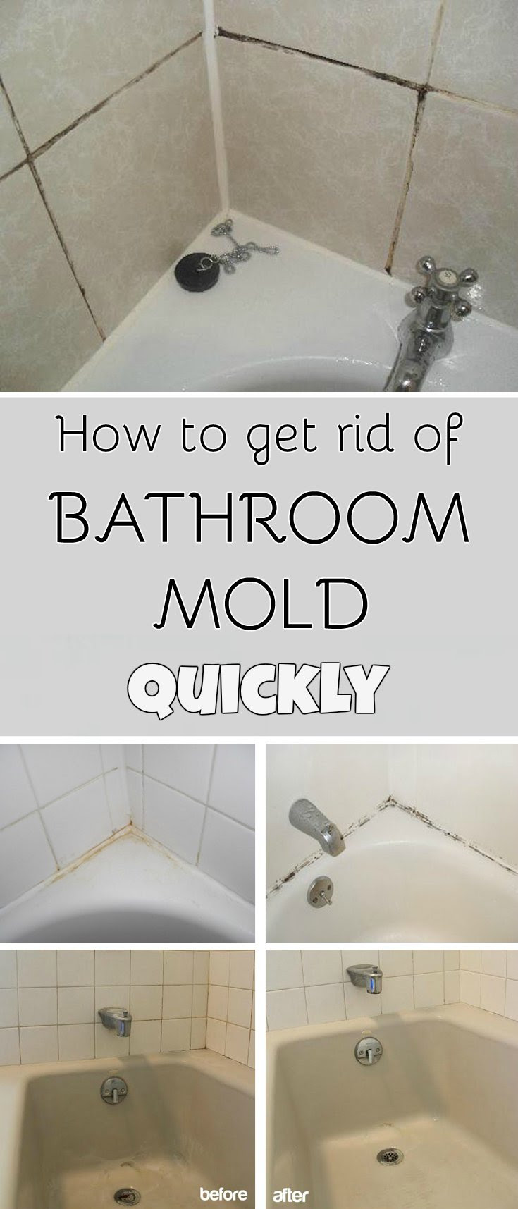 How To Get Rid Of Bathroom Mold Quickly MyCleaningSolutionscom