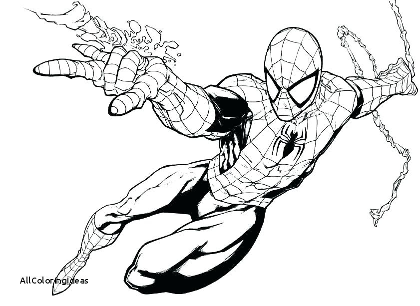 5400 Free Spiderman Coloring Pages Pictures