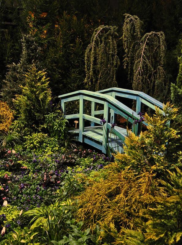 My Monet, Norristown Garden Club