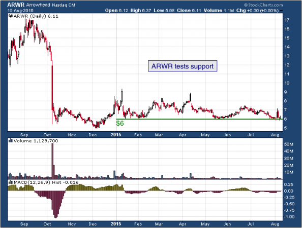 1-year chart of Arrowhead (NASDAQ: ARWR)
