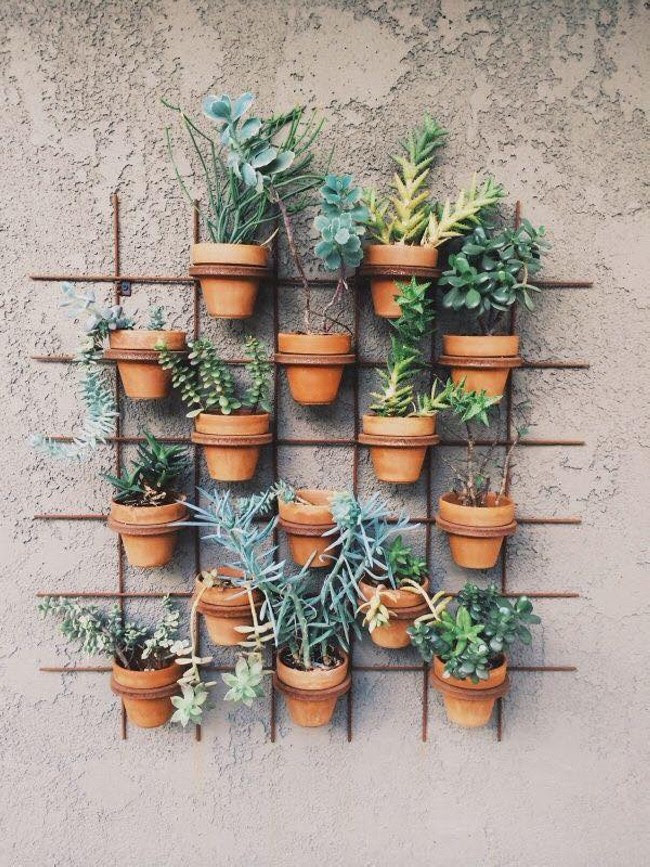 Decorating Ideas with Plants   Upcycle Art