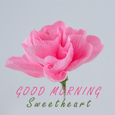 Good Morning Sweetheart Flowers For Girlfriend Good Morning Images