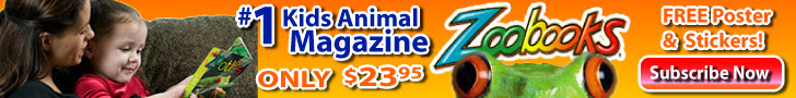ZoobooksTrial Issue, Free Animal Poster & Stickers