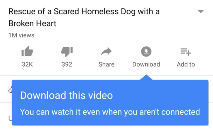 يوتيوب يضيف زر لتحميل الفيديوات دون الحاجة الى برامج اخرى للتحميل