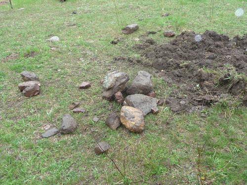 Digging Rocks...