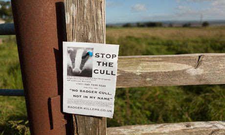 Badger cull : Anti-badger cull flyer on a stile near Blakeney, Gloucestershire