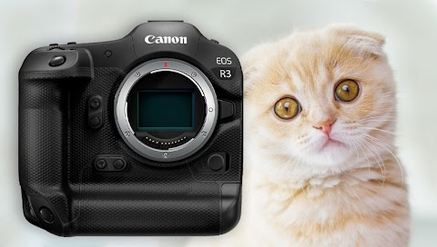 Is the Global Chip Shortage Going to Delay the Canon R3 and Nikon Z 8?